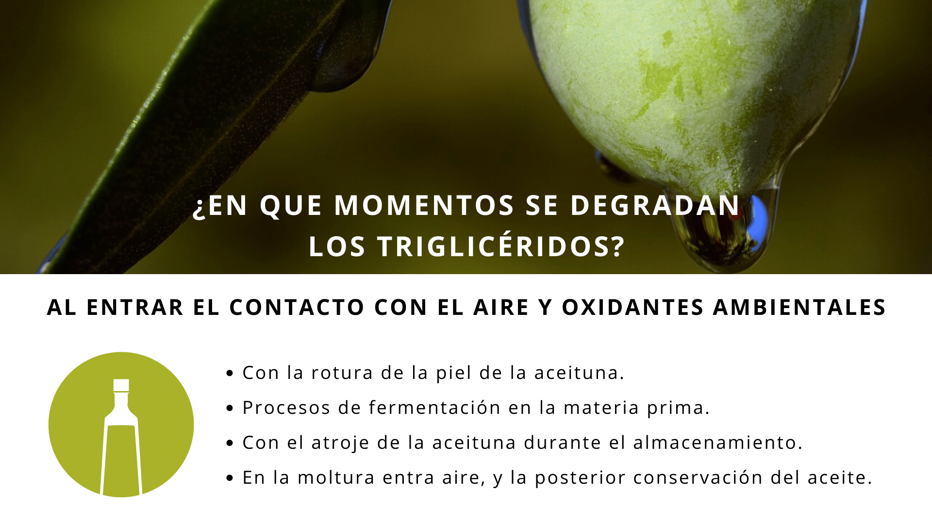 Parámetos analíticos aceites oliva 2